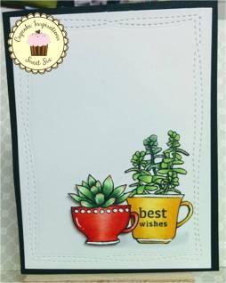 bharati nayudu_ Simon says stamp succulent CAS card.jpg