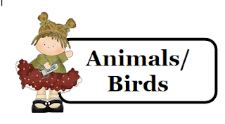 Animals Birds